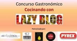lazy blog