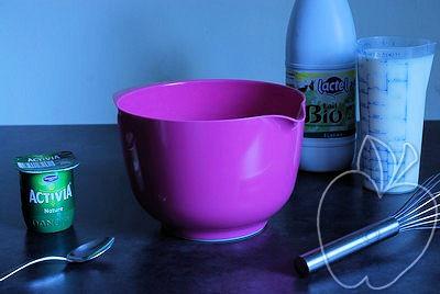 Mi yogurtera (3)