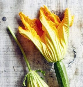 Courgettes from the garden
