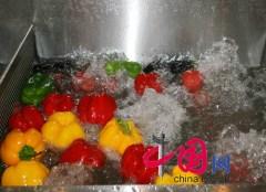 chinaexposicin2