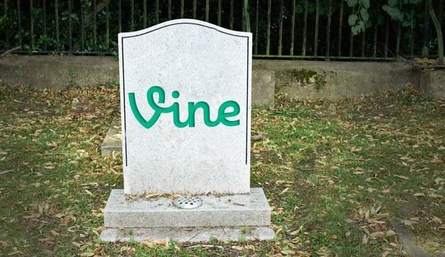 RIP Vine – הספד לאפליקציה ומהפכת הקומדיה שלא קרתה