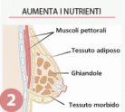 aumenta-i-nutrienti