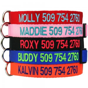 Safety Snap Dog Collar