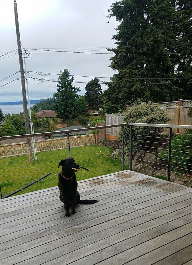 Zoe on deck