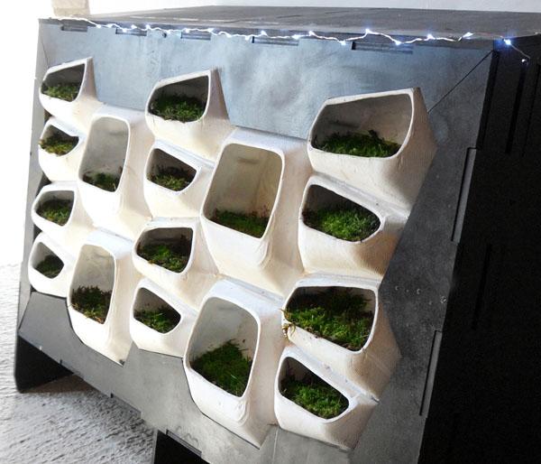 Sistema modular de muros verdes genera electricidad a partir del musgo