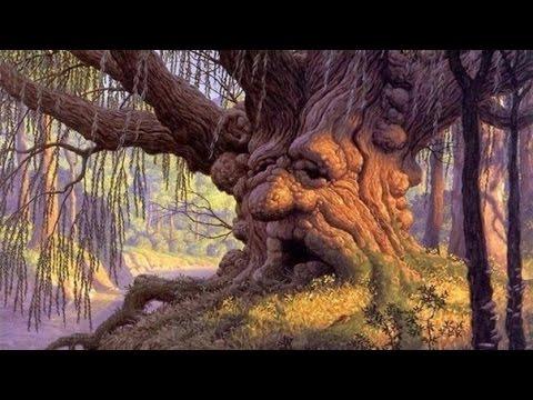 Los 6 árboles más antigüos del mundo (video)