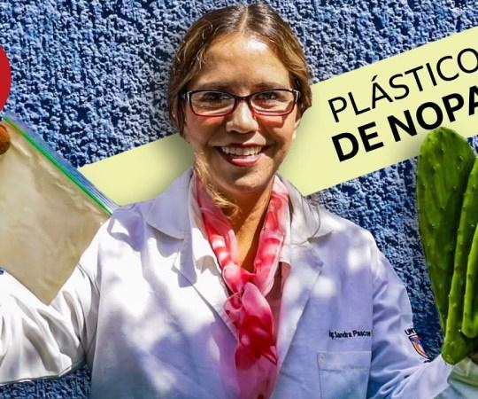 Nopal para reemplazar el plástico: el ingenioso hallazgo de una investigadora mexicana