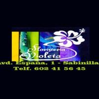 Floristería VIOLETA en Sabinillas