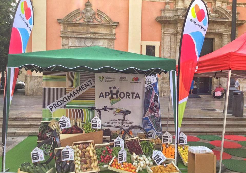 Galeria de fotos d'Aphorta