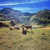 Parque Natural de Somiedo: Qué hacer imprescindible y dónde alojarse