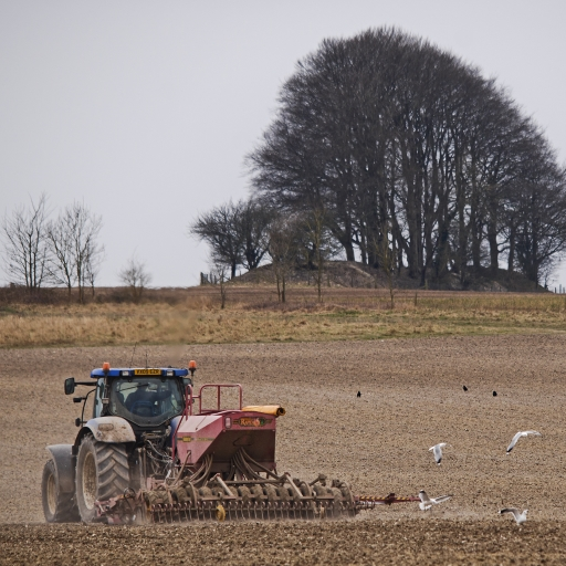 tractor, copse and barrow