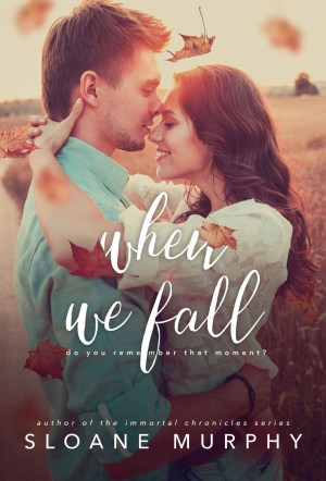 when we fall book cover