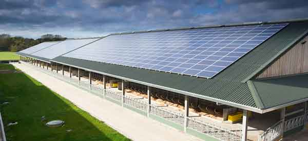 solar pv for dairy farms