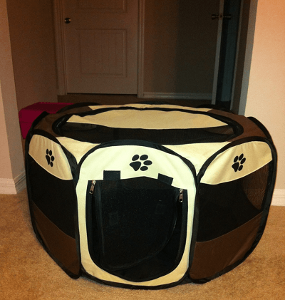 Pawsome Find: Portable Pet Playpen