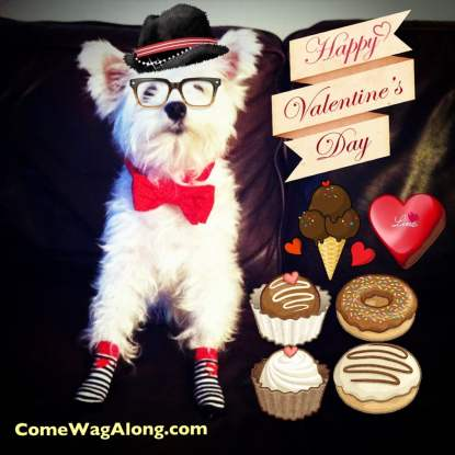 Valentine's Day Dog Treats