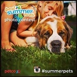 Petco 'Best Summer Ever' Instagram Photo Contest
