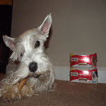 #MilkBone Brushing Chews Giveaway!