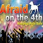 Infographic: Keeping Your Pets Safe on the 4th Of July!