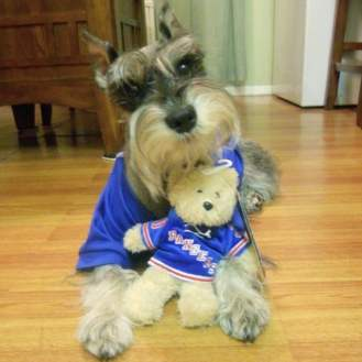 I love hockey! Let's go New York Rangers!