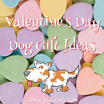 Valentine's Day Dog Gift Ideas