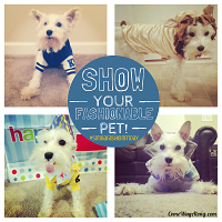 BlogPaws Blog Hop: Wordless Wednesday – #SimbaFashionFriday