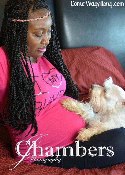 dog during pregnancy