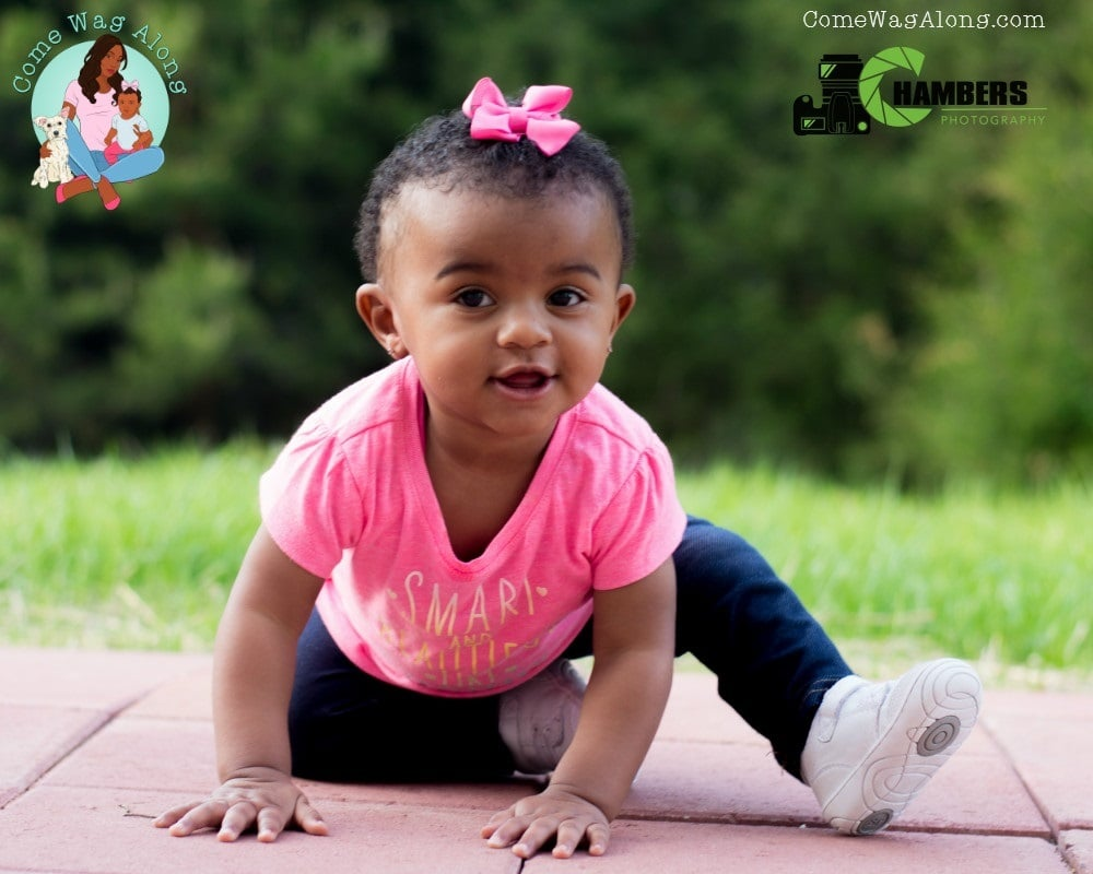 11 Month Baby Milestones - ComeWagAlong.com
