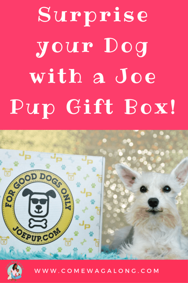 Surprise Your Dog with a Joe Pup Gift Box - ComeWagAlong.com