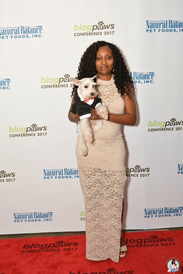 BlogPaws Conference Red Carpet Simba Kia
