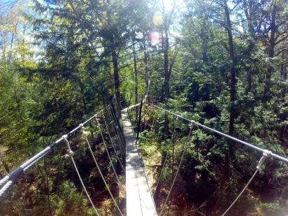Walk in the Clouds Canopy Tour - Haliburton Forest