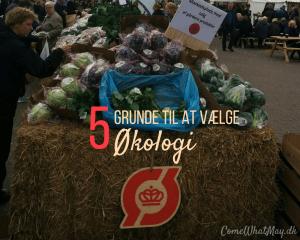hvorfor skal man vælge økologi | undgå pesticider | red vores grundvand