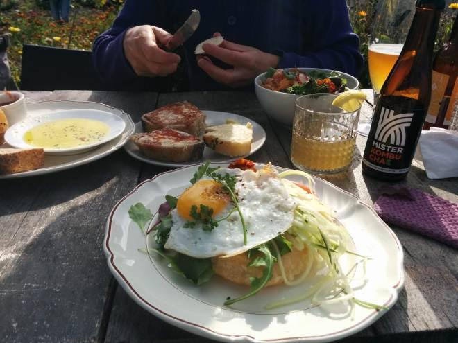 På Op het Dak kan lækker mad nydes midt i en oase på toppen af Rotterdam