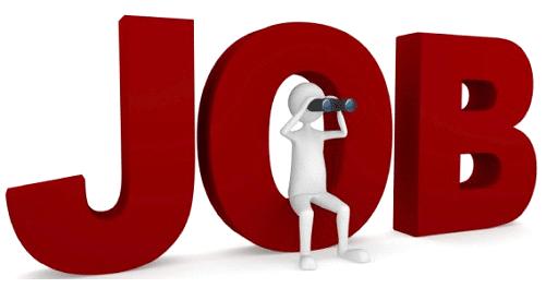 Offre d'emploi : Technicien électronicien ROV H/F