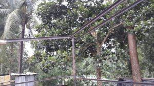 MyanmarSchool2-20171115
