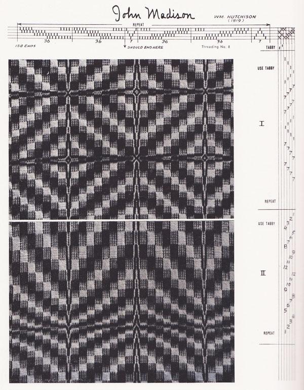 Beautiful undulating lines and bold patterns!