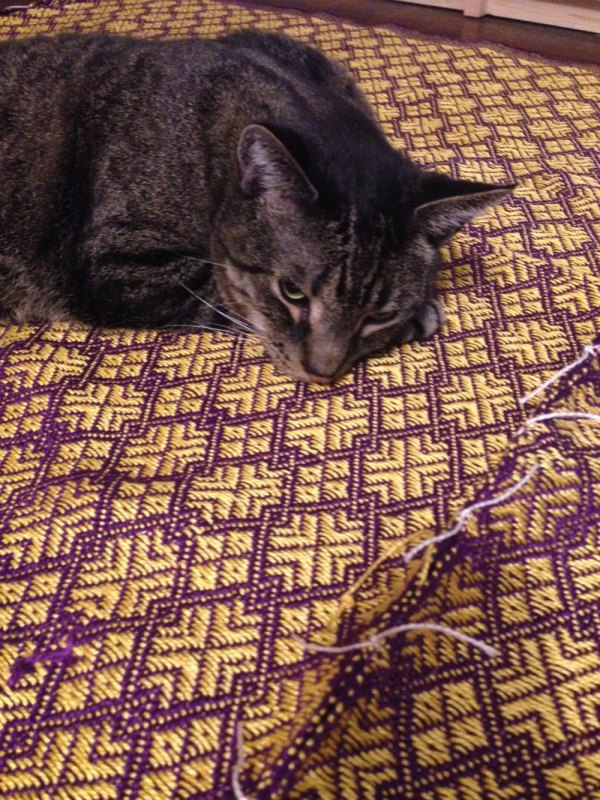 The blanket panels tacked together- with a little help from my weaving friend, Rupert.