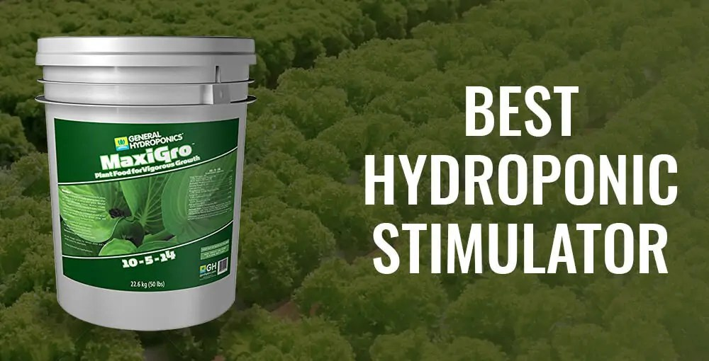 Top 5 Best Hydroponic Nutrients