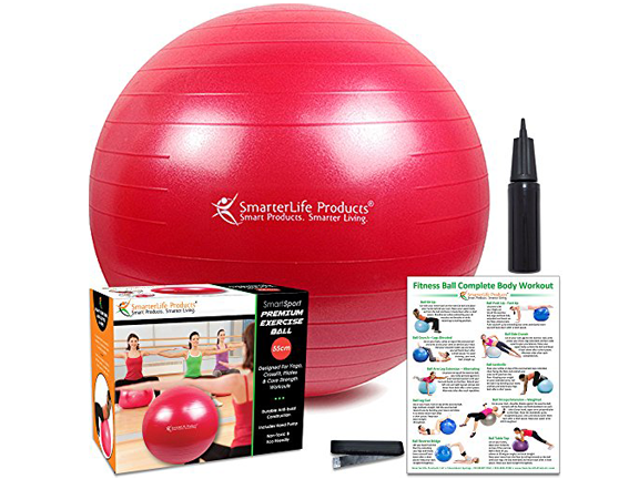 Exercise Ball-Smarterlife Products-SmartSport Premium Exercise Ball