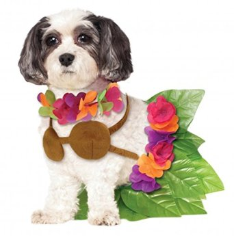 halloween-costumes-pets-hula-girl.jpg