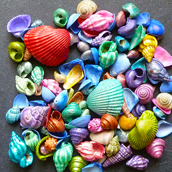 Colorful Sea Shell (1 cup).jpg