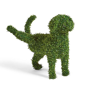 Peabody Faux Boxwood Garden Dog by Fancy with white background