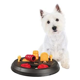 Dog accessories- Trixie Pet Puzzle Toy