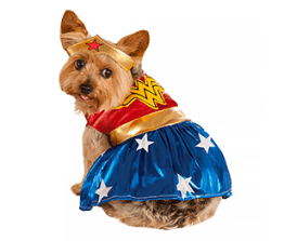 Dog Halloween costumes- Wonder Woman