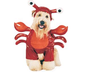 Lobster Pet Costume