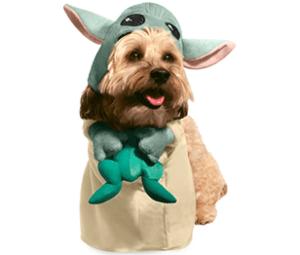 The Child Pet Costume