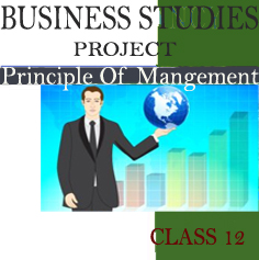 Business Studies Project on Principles Of Management