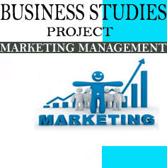Business Studies Project on Marketing Management