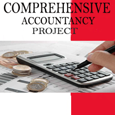 Comprehensive Accountancy Project