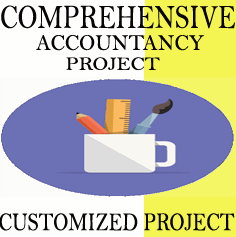Customized Comprehensive Accountancy Project