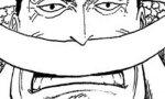 【ワンピース】白ひげ海賊団ってビッグマム海賊団と比べて弱すぎるwwwwww